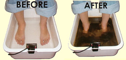 IonCleanse Foot Bath